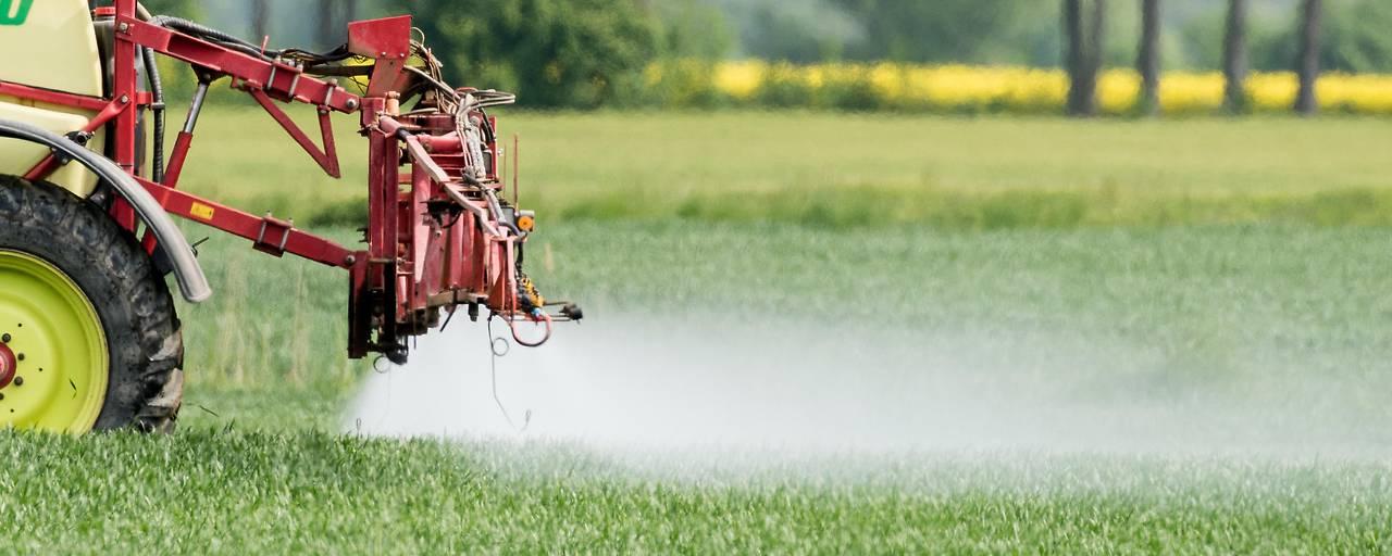 Lachgas gefährdet Klimaziele