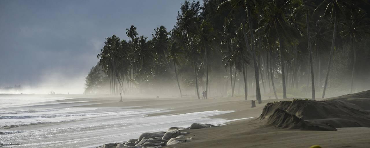 Hitzewellen in Meeren